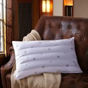 恒源祥 荞麦枕 枕头枕芯 单个TGZ1004