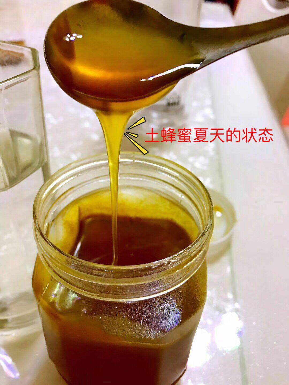 青川山珍《青川土蜂蜜》 500g