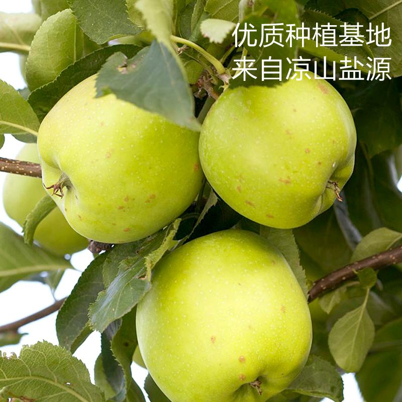 阳光味道纯苹果汁1LlX4盒