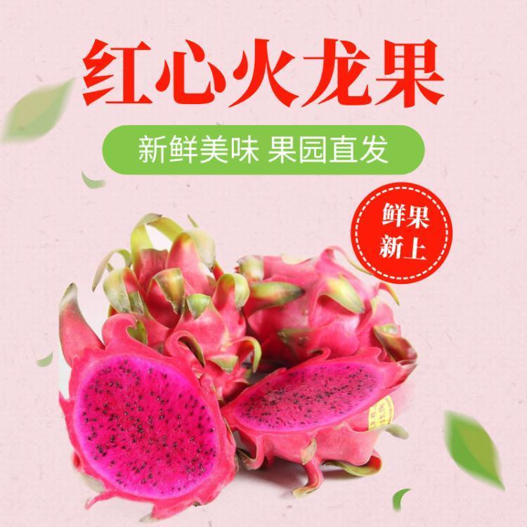红心火龙果(中果)2.5kg左右