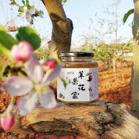 【四川盐源 】盐源苹果花蜜 包邮