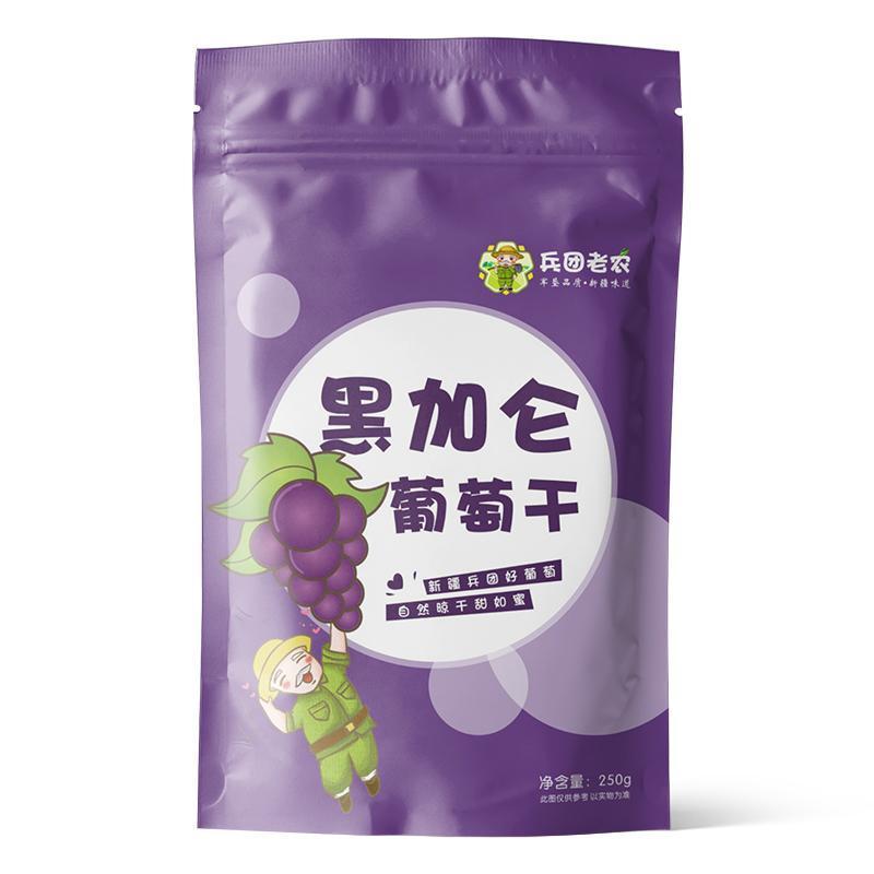 吐鲁番黑加仑葡萄干无籽提子干250g袋装孕妇办公休闲零食 新疆特产 250g2袋