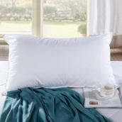 单人学生宿舍枕头枕芯 成人枕头颈椎枕保健枕 4874 白色 枕芯